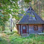 sommerhus i skoven