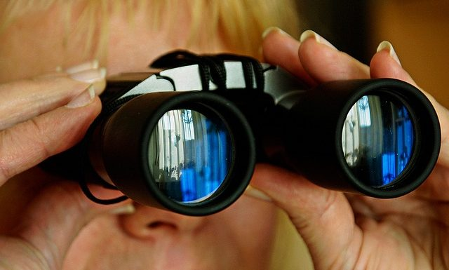 Vælg den rette kikkert til at se på fugle